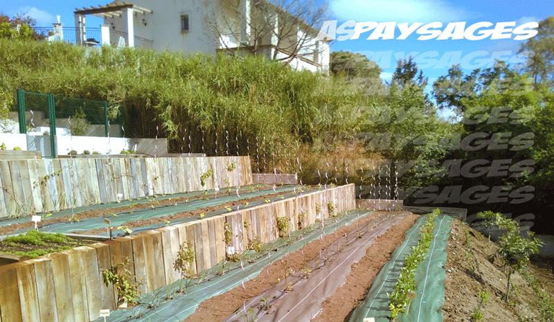 Am nagement de jardin var paysagiste entretien lagage for Entretien jardin frejus